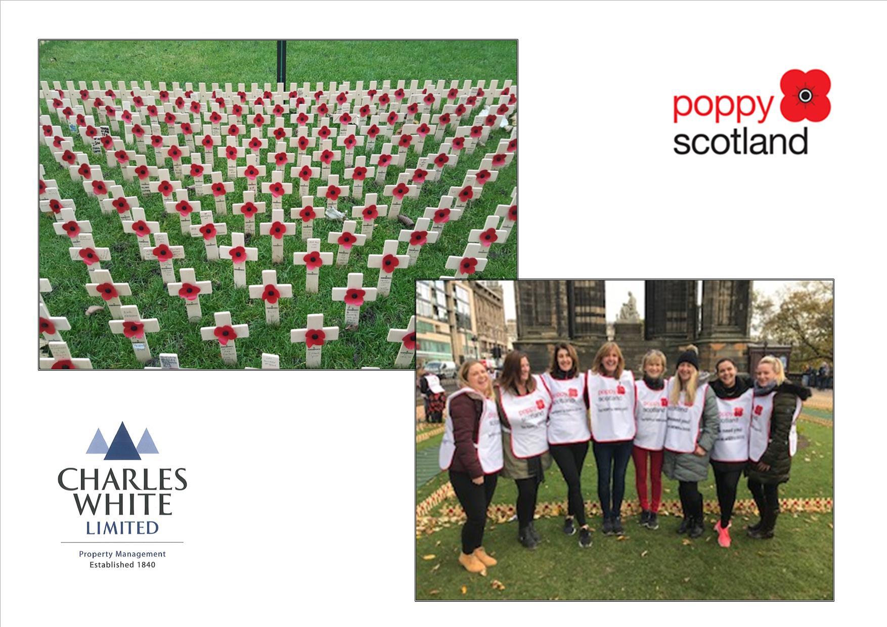 Poppyscotland volunteering day